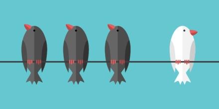 Design Principle No. 5: How Can Contrast Make My Designs Pop?