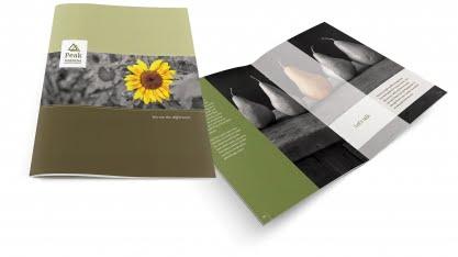 Peak Financial Brochure